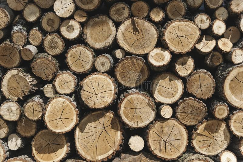 Photography of Woodpile stock image