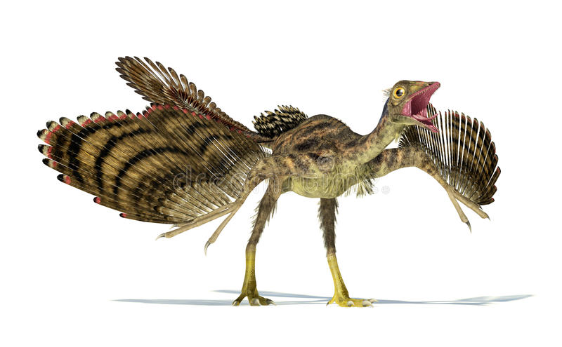 Photorealistic representation of an Archaeopteryx dinosaur. royalty free illustration