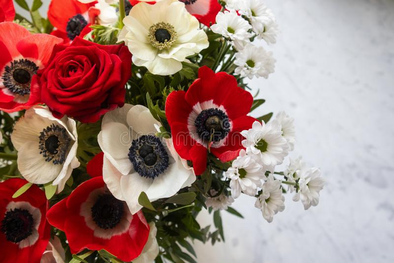 Photos of a bouquet of red and white flowers anemone and roses stock image