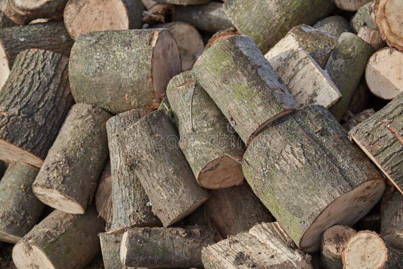 Photos de la texture en bois photo libre de droits