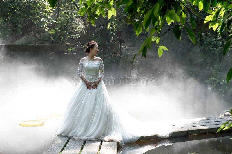 Photos de mariage de belle jeune mariée image stock