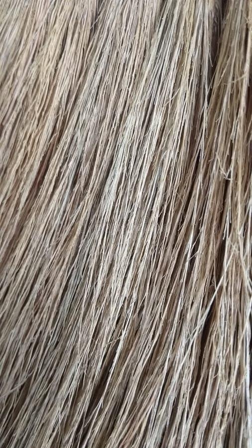 Photos en gros plan de fibre sèche images stock
