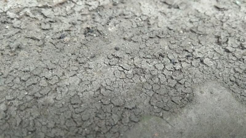Photos en gros plan de mud2 sec photographie stock