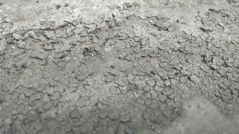 Photos en gros plan de mud3 sec images libres de droits