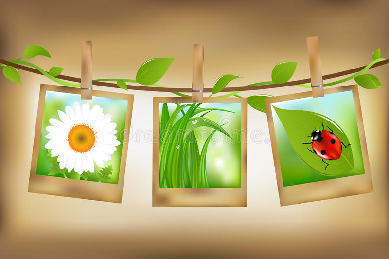 Download Photos With Nature Image. Vector Stock Vector - Image: 16655218