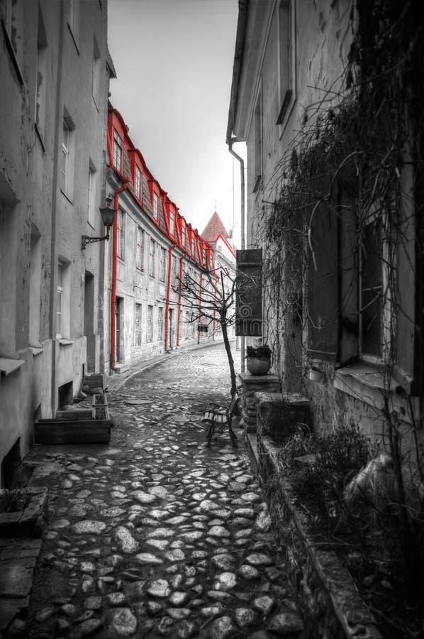 Photos of Tallinn royalty free stock images
