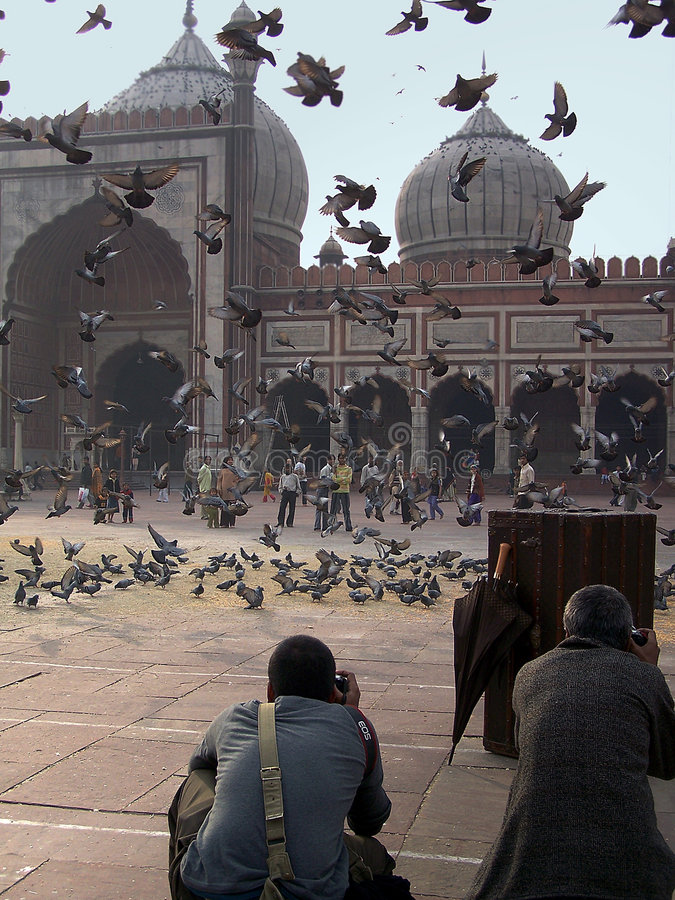 Photoshoot in the courtyard. Photo shoot happening among the pigeons at the Jama Masjid stock images