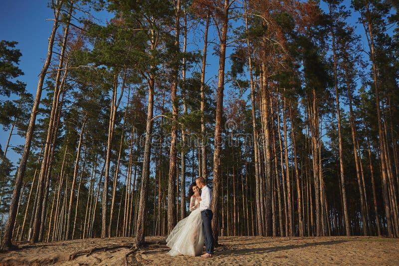Photoshoot-Liebhaber in einem Hochzeitskleid in den Bergen nahe dem Meer stockfotos