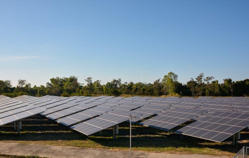 Photovoltaic landbouwbedrijf van zonne-energiepanelen stock afbeeldingen