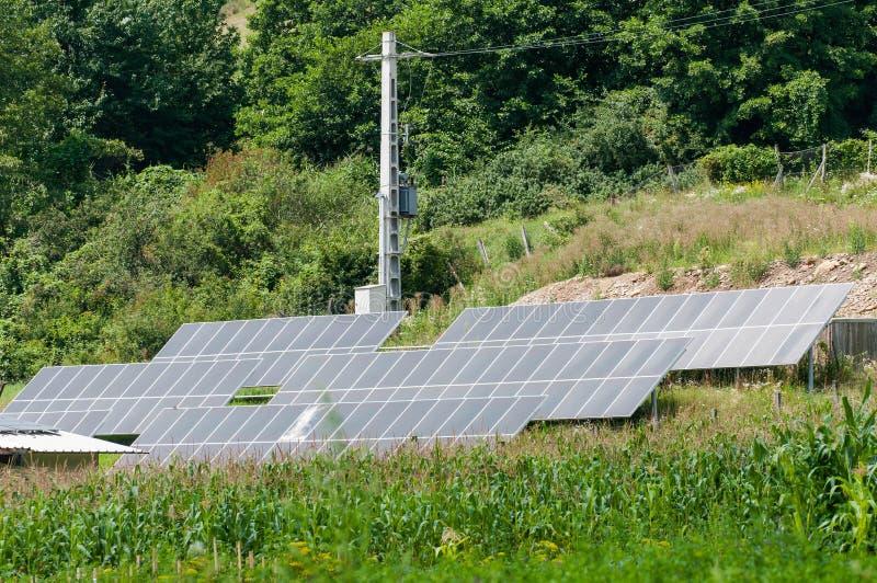 Photovoltaic panelen in velen rij dichtbij een bos royalty-vrije stock fotografie