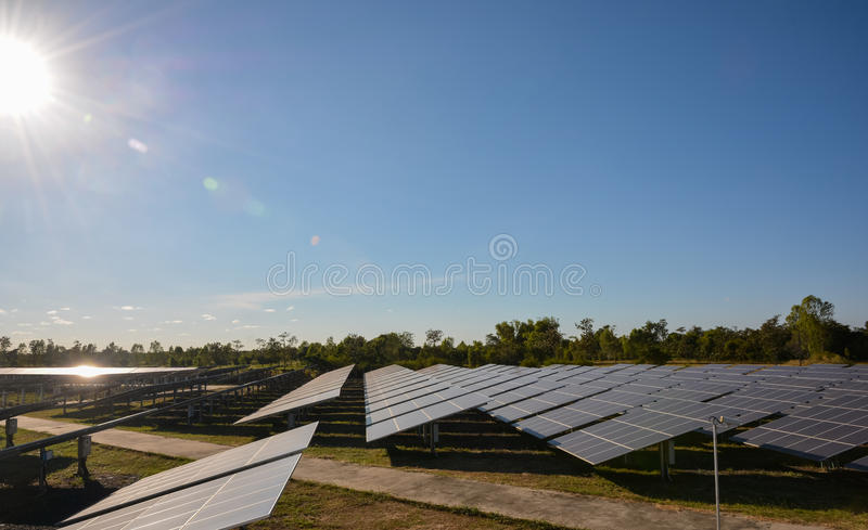 Photovoltaic panellantgård för sol- energi royaltyfria bilder