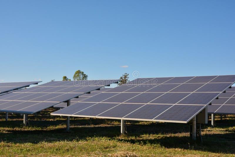 Photovoltaic panellantgård för sol- energi royaltyfri foto