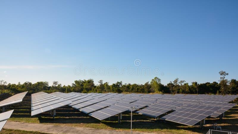 Photovoltaic panellantgård för sol- energi arkivfoto