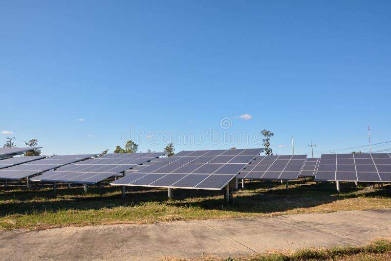 Photovoltaic panellantgård för sol- energi royaltyfria foton
