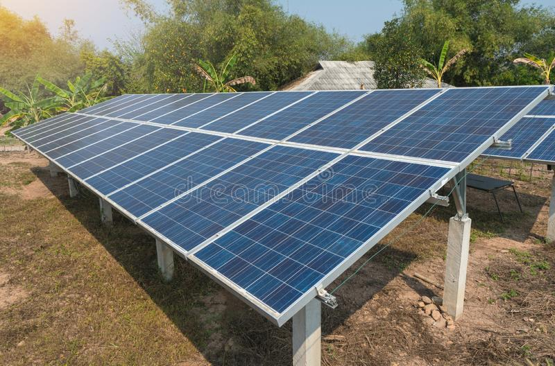 Photovoltaic using renewable solar energy in forest.  royalty free stock image