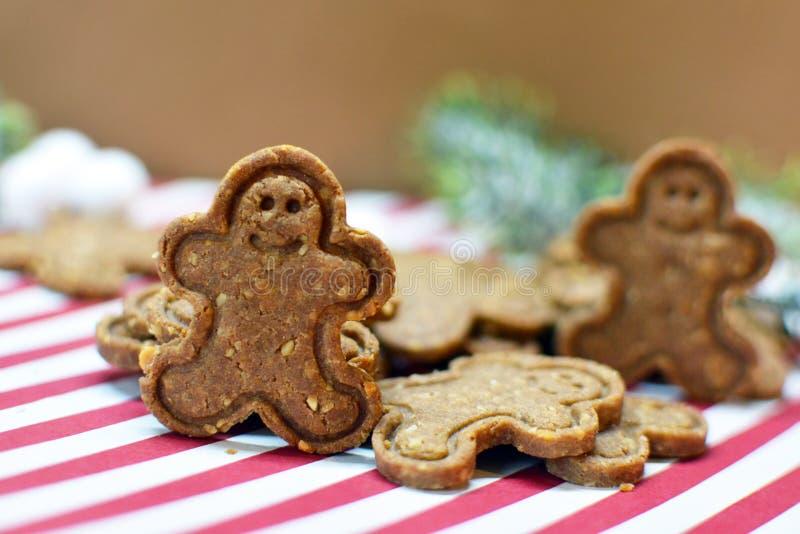 Phpotography de la comida de las galletas marrones de la Navidad del hombre de pan de jengibre con las nueces imágenes de archivo libres de regalías