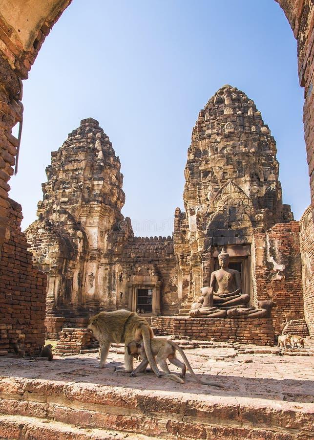 Phra Prang Sam Yod, Lopburi, Thailand stock image