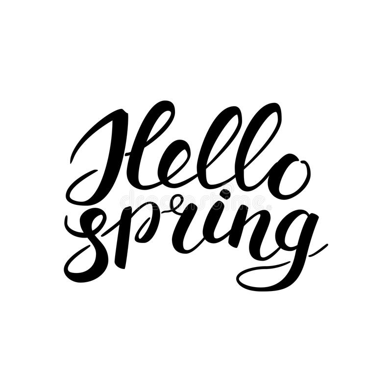 Phrase Hello spring Brush Pen lettering isolated on background. Handwritten vector Illustration. Welcome phrase for your design royalty free illustration