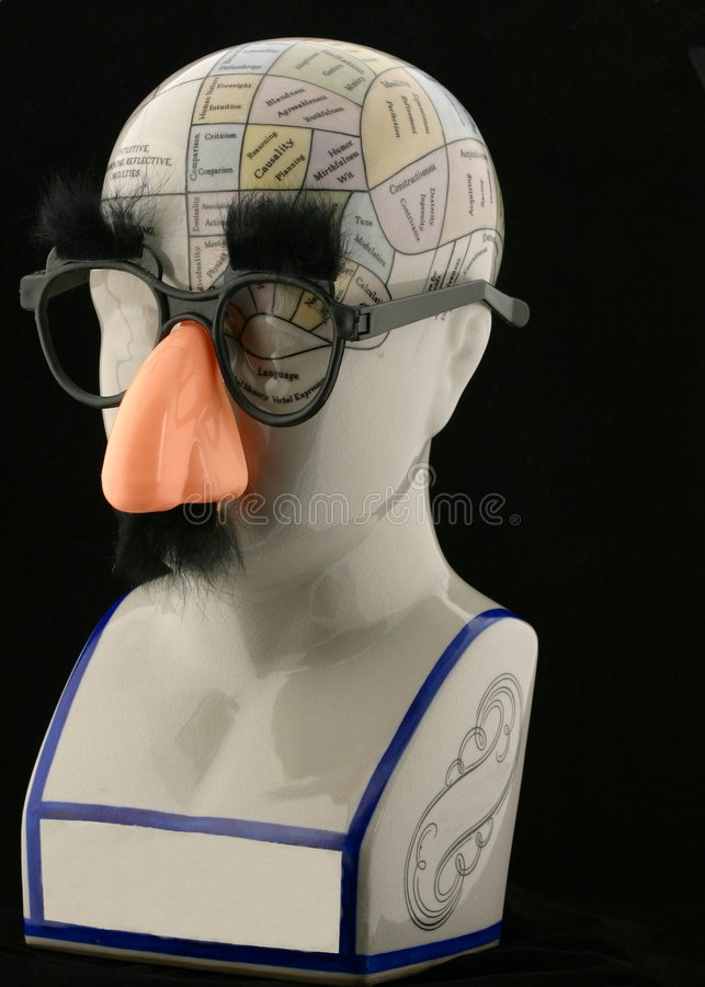 Phrenology Head with Gag Glasses. Phrenology head wearing gag glasses, eyebrows, and nose stock images