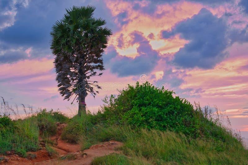 Phromthep-Kap, Phuket Ein berühmter Sonnenuntergangstandpunkt stockbild