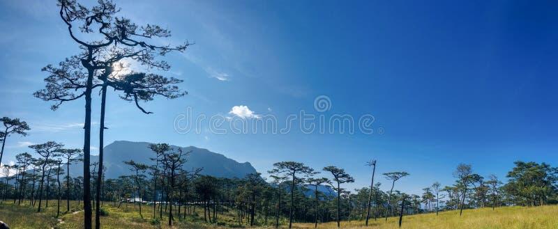 Phu Soi Dao photographie stock libre de droits