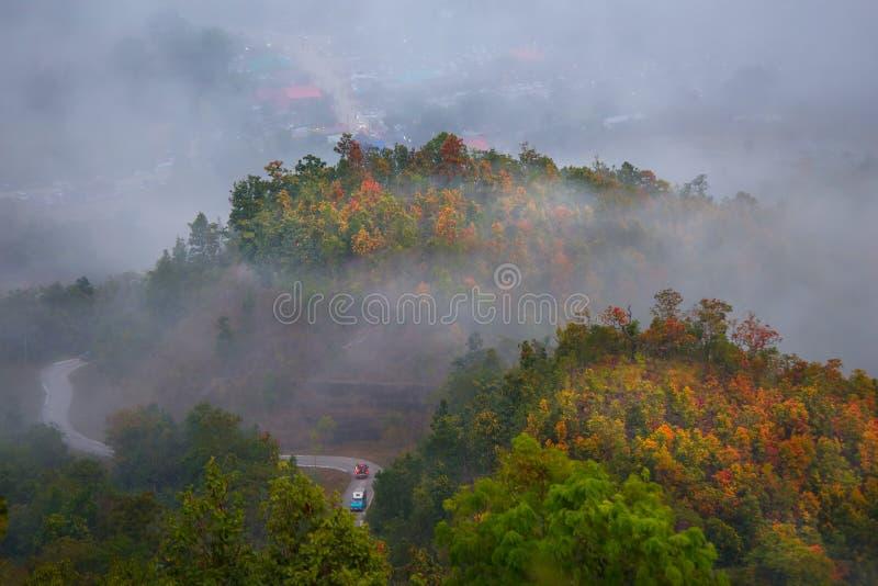 Phu thok chiang khan in loei. Beautiful landscpe and fog at phu thok chiang khan in loei province thailand stock photo