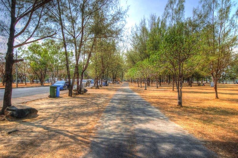 Phuket arkivbild