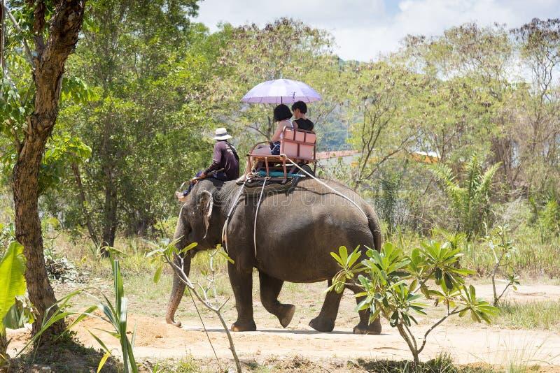 Phuket, Tailandia - 04/19/2019 - elefante che bagna campo a Phuket con l'elefante prigioniero che dà i giri ai turisti fotografia stock