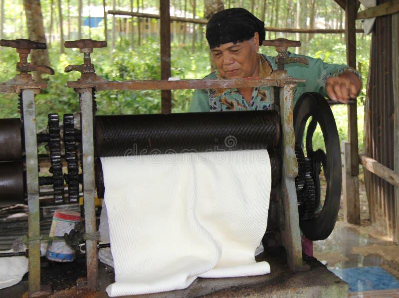 PHUKET, THAILAND - 10. August: Eine unbekannte Frau rollt Latex harves stockfotos