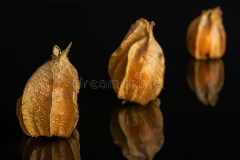 Physalis arancio fresco isolato su vetro nero immagini stock libere da diritti