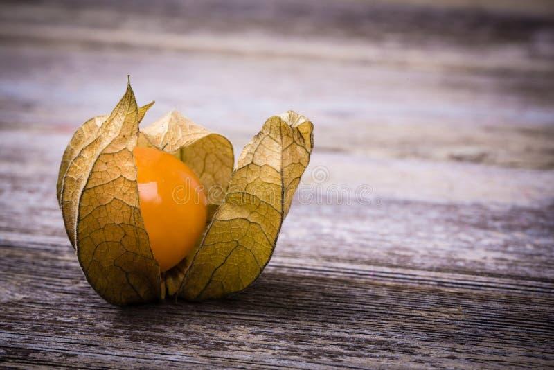 Physalis fruit on wooden background stock photo