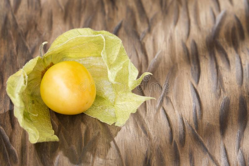 Physalis on a dark wood background. toning. selective focus on left middle physalis. Physalis physalis, golden, gooseberry on wooden background royalty free stock photos