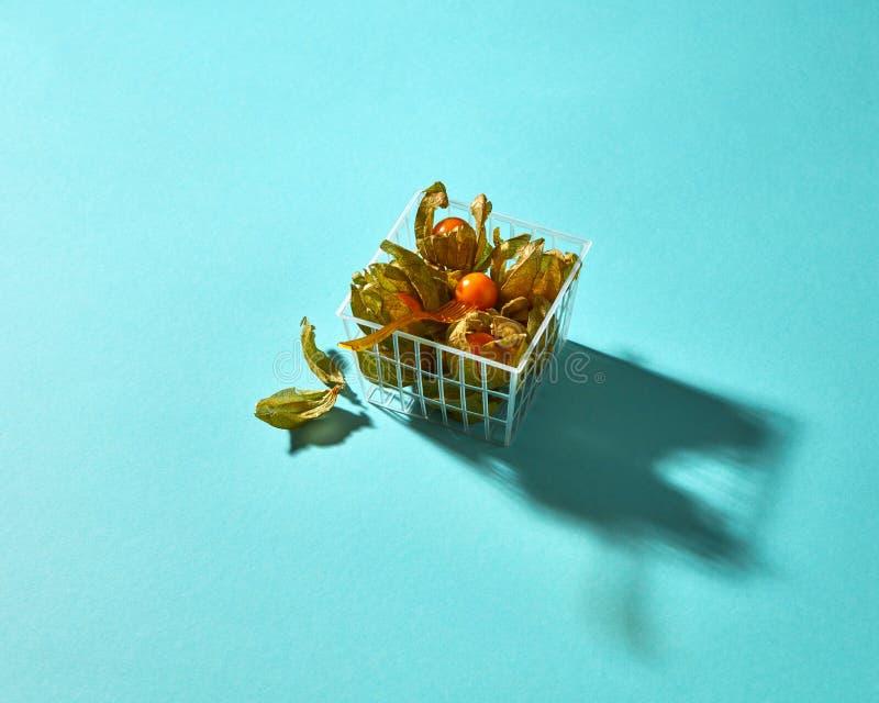Physalis en una cesta aislada en un fondo azul foto de archivo libre de regalías