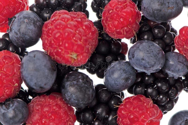 Physalis Fruits Stock Photos