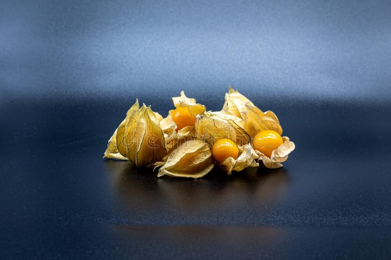 Physalis  on black background royalty free stock images