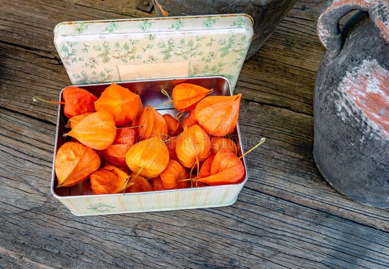 Physalis - lanterna chinesa - em uma caixa em uma tabela de madeira rústica imagens de stock
