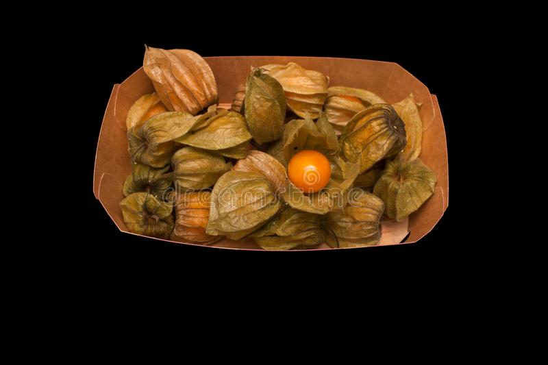 Physalis peruviana Cape gooseberry, goldenberry isolated on a stock photography