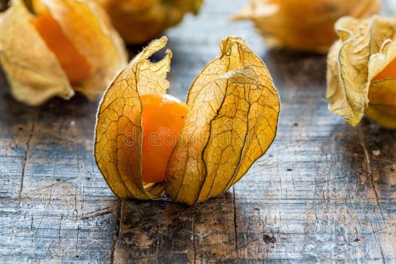Physalis Peruviana de la fruta del Physalis con la cáscara imagen de archivo libre de regalías