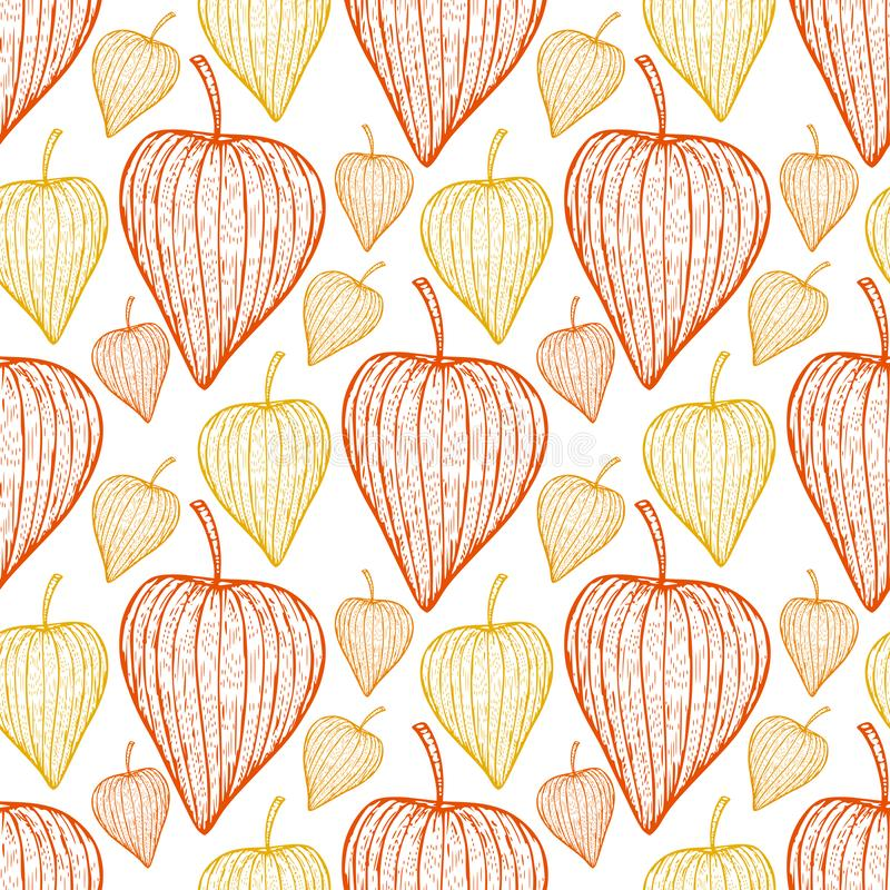 Physalis seamless background. Vector pattern design in orange and yellow colors. stock illustration