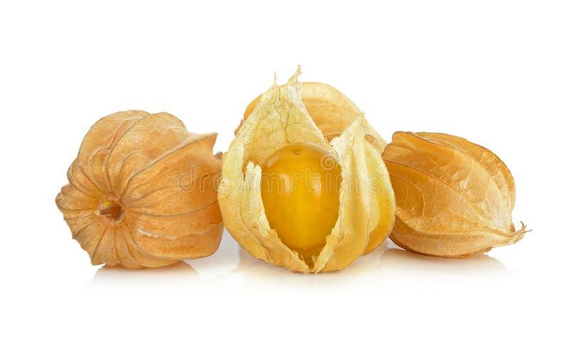 Physalisfruit op de witte achtergrond wordt geïsoleerd die royalty-vrije stock afbeeldingen