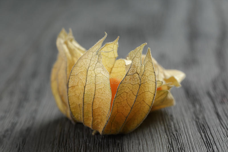 Physalisfruit op eiken houten lijst stock foto