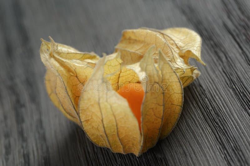 Physalisfruit op eiken houten lijst stock fotografie