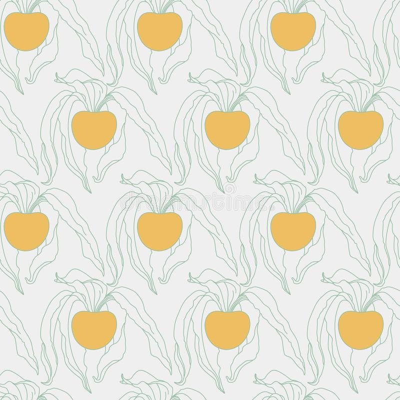 Physalishand Getrokken Naadloos Patroon op Lichtgrijs met Oranje B vector illustratie