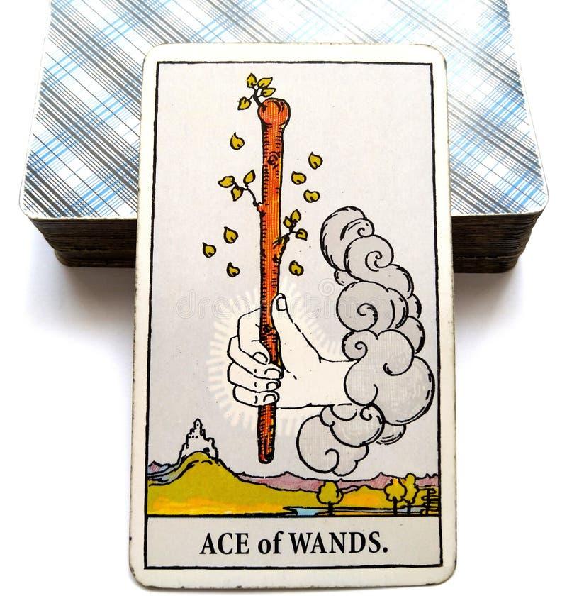 Ace of Wands Tarot Card Initiative Creative Inspirational Drive, Ambition, Adventure, Excitemen stock illustration