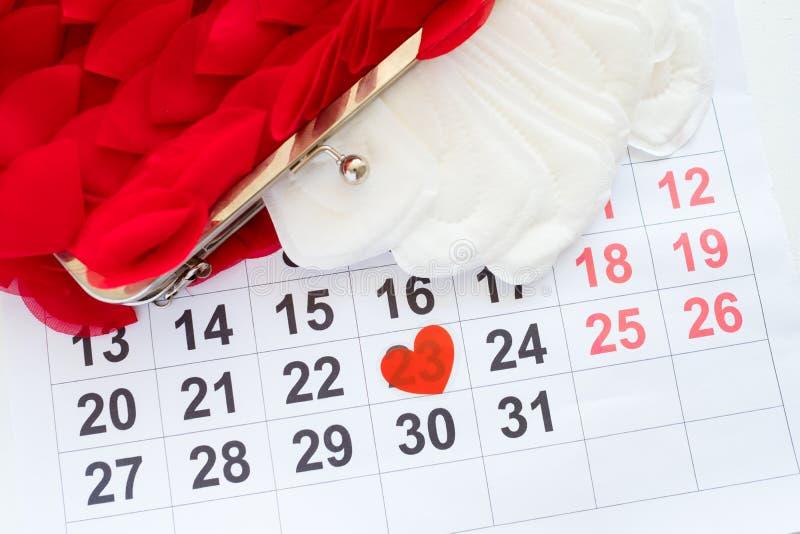Physiologie femelle de calendrier de cycle menstruel mensuel images libres de droits