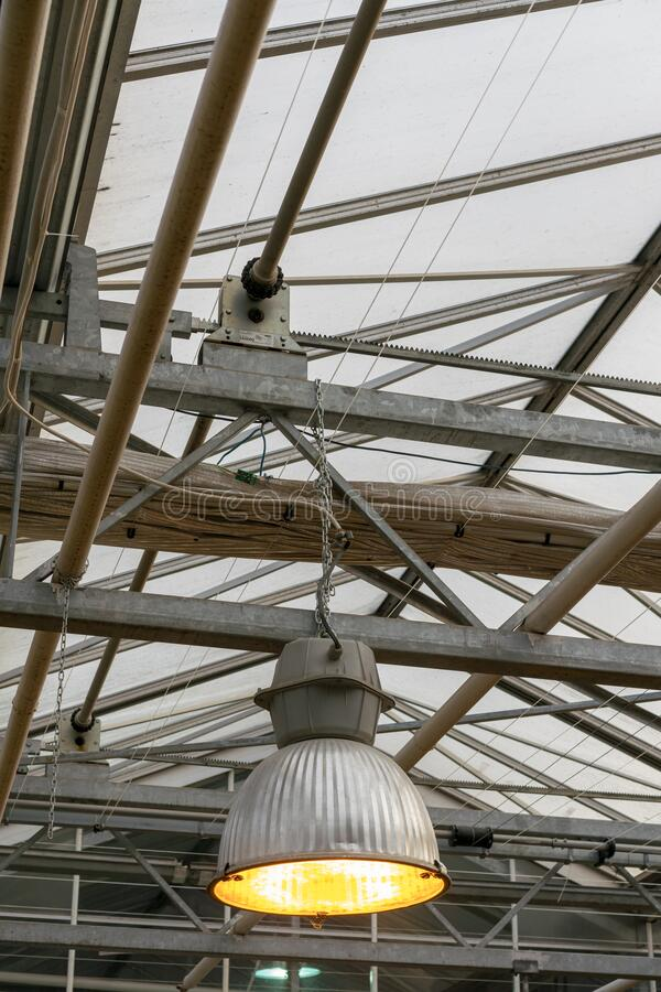 Phyto lamps for plant growth in the winter season in the greenhouse / hothouse. Artificial lighting of plants in short daylight. Conditions stock image