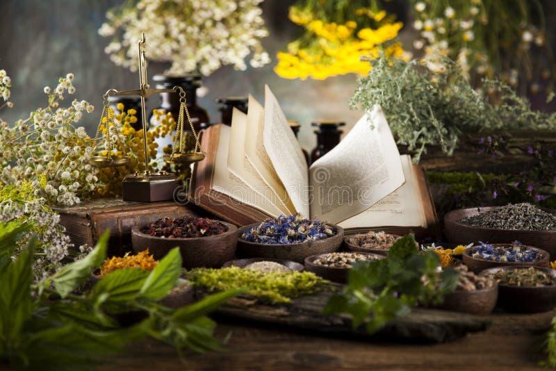 Phytothérapie et livre sur le fond en bois de table photo stock