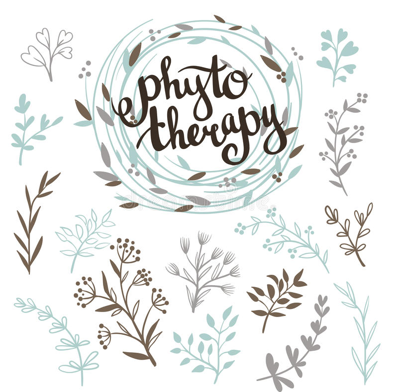 Phytotherapy background. Stylish lettering in the wreath and set of herbs. Phytotherapy background. Stylish lettering in the wreath and set of herbs .Natural stock illustration