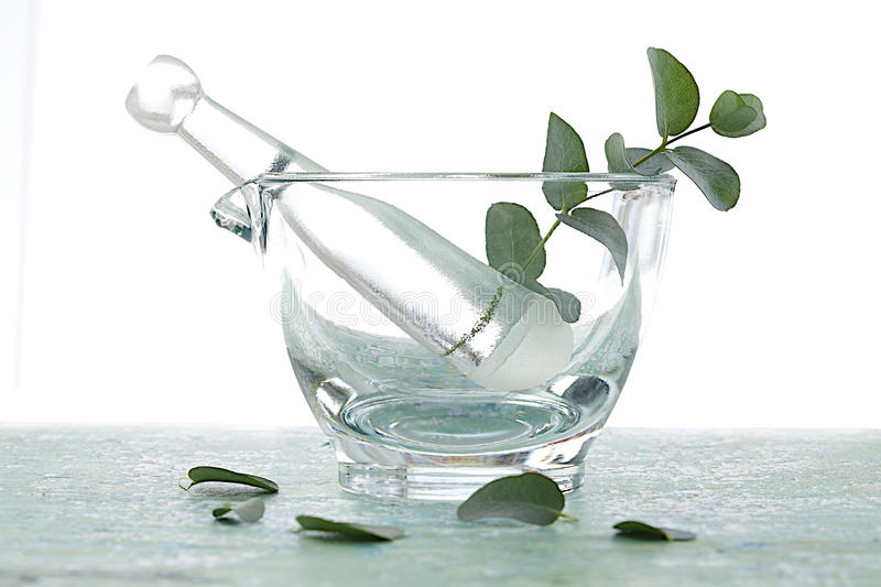 Phytotherapy - Eucalyptus essential oil royalty free stock image