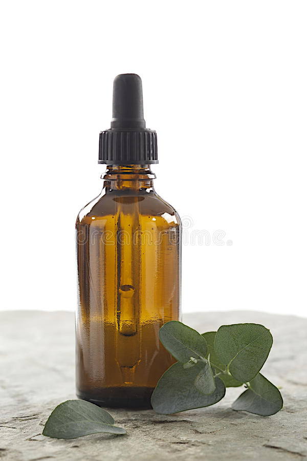 Phytotherapy - huile essentielle d'eucalyptus photographie stock libre de droits